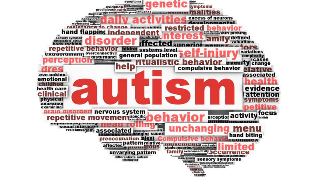 Explaining Autism-Related Terms