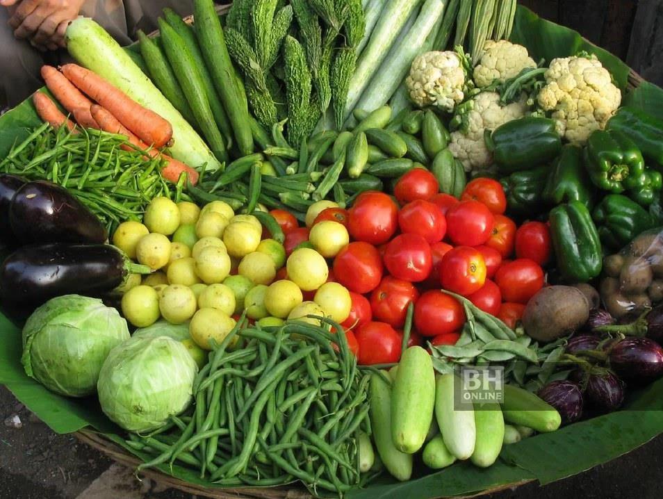 Manfaat TVET latih OKU ceburi bidang pertanian